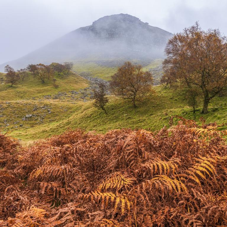 Autumn scenes across the Peak District National park with misty mountains rustic bracken and autumn trees in the mist near Buxton, Derbyshire