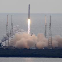 spacex (1)